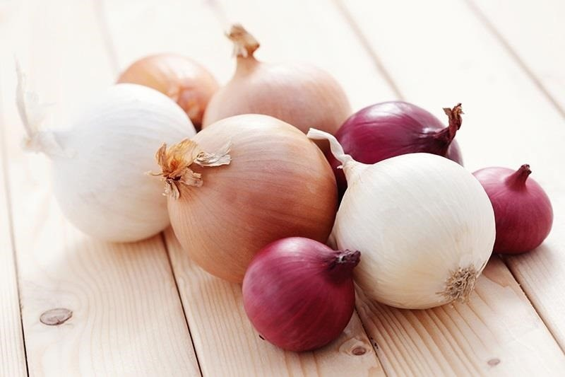 ultimate-onion-cheat-sheet-which-onion-goes-best-with-what-w1456