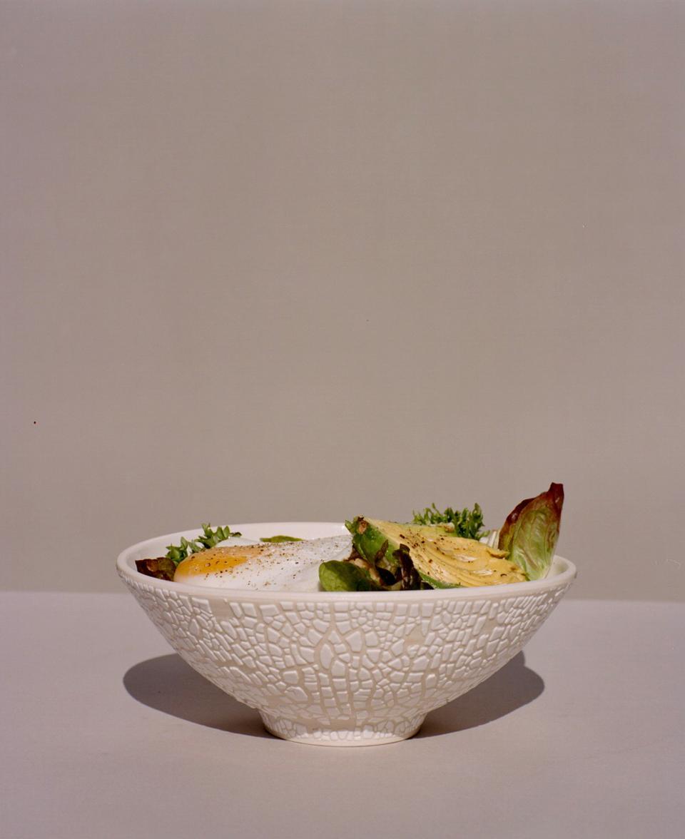 Food-bowl-1