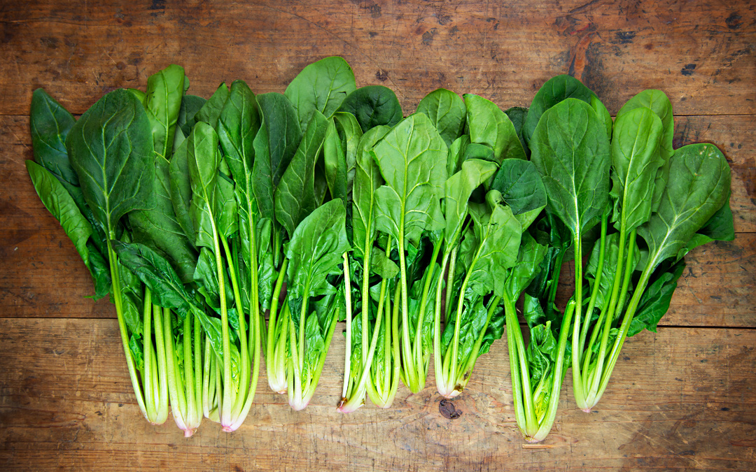 spinach-1523dca