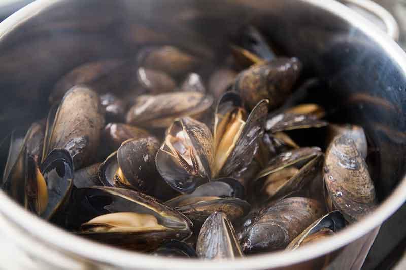 mussels-white-wine-sauce-method-2